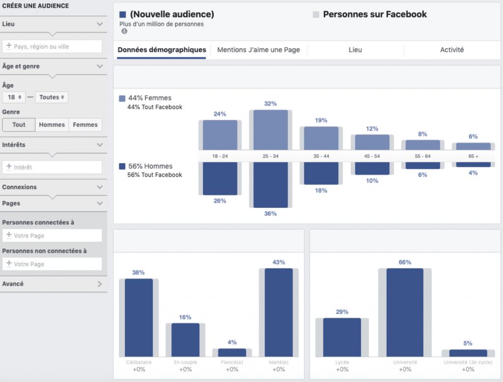Graphique utilisation Facebook ADS Manager